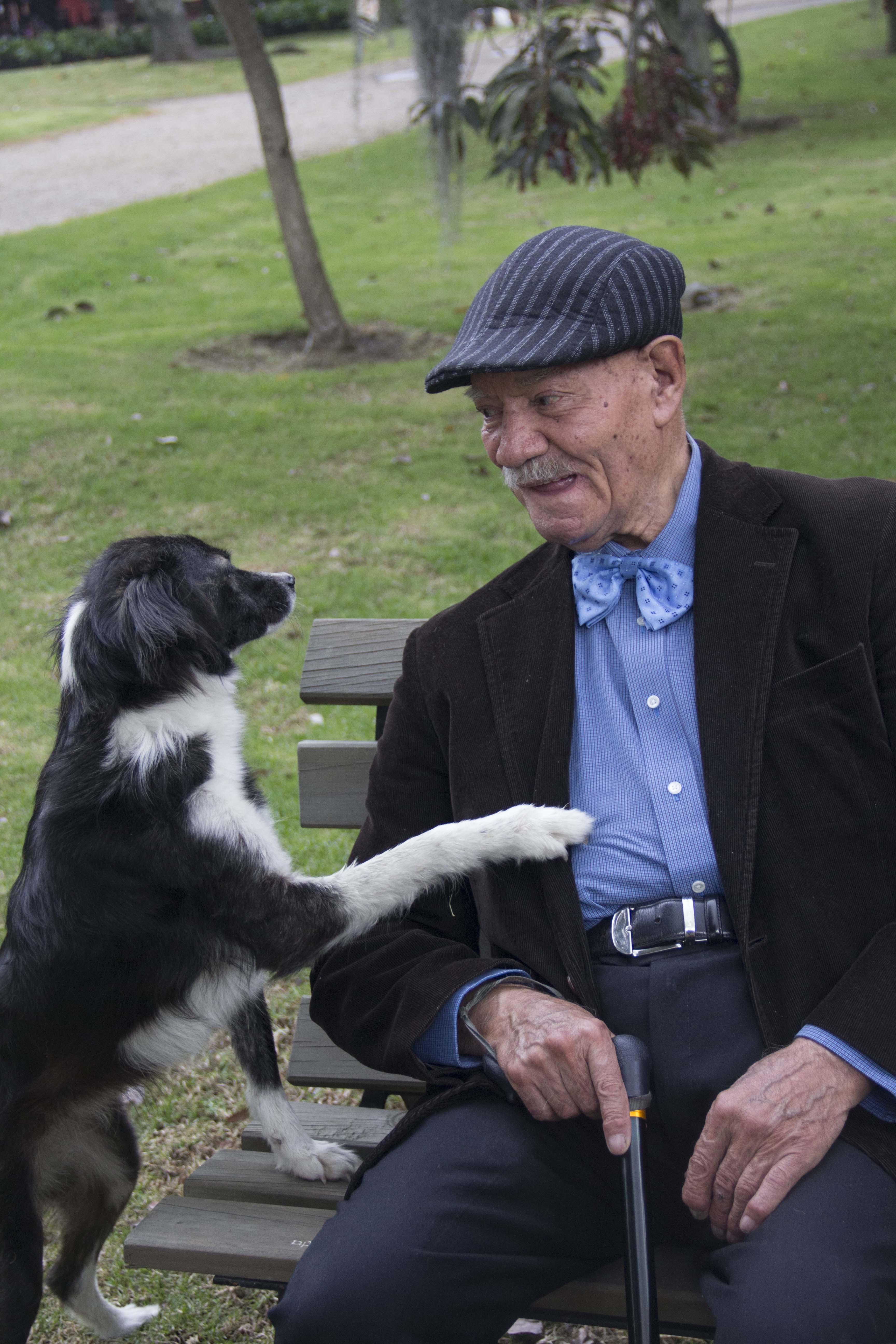 Mascotas en residencias, más allá de la terapia con animales