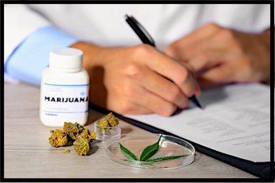 la marihuana terapéutica. Sus pros y sus contras