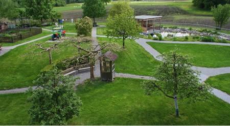 Jardínes para ancianos