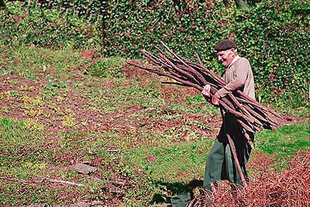 Ancianos y turismo rural